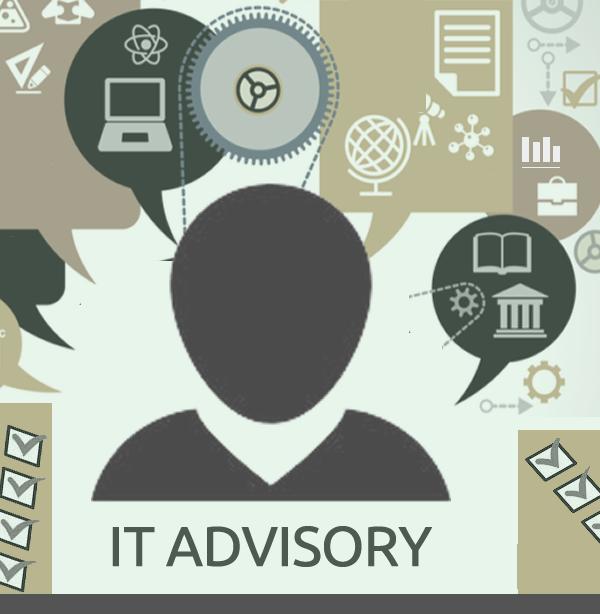 ¿Por qué Interim IT Management Services o IT Advisory?