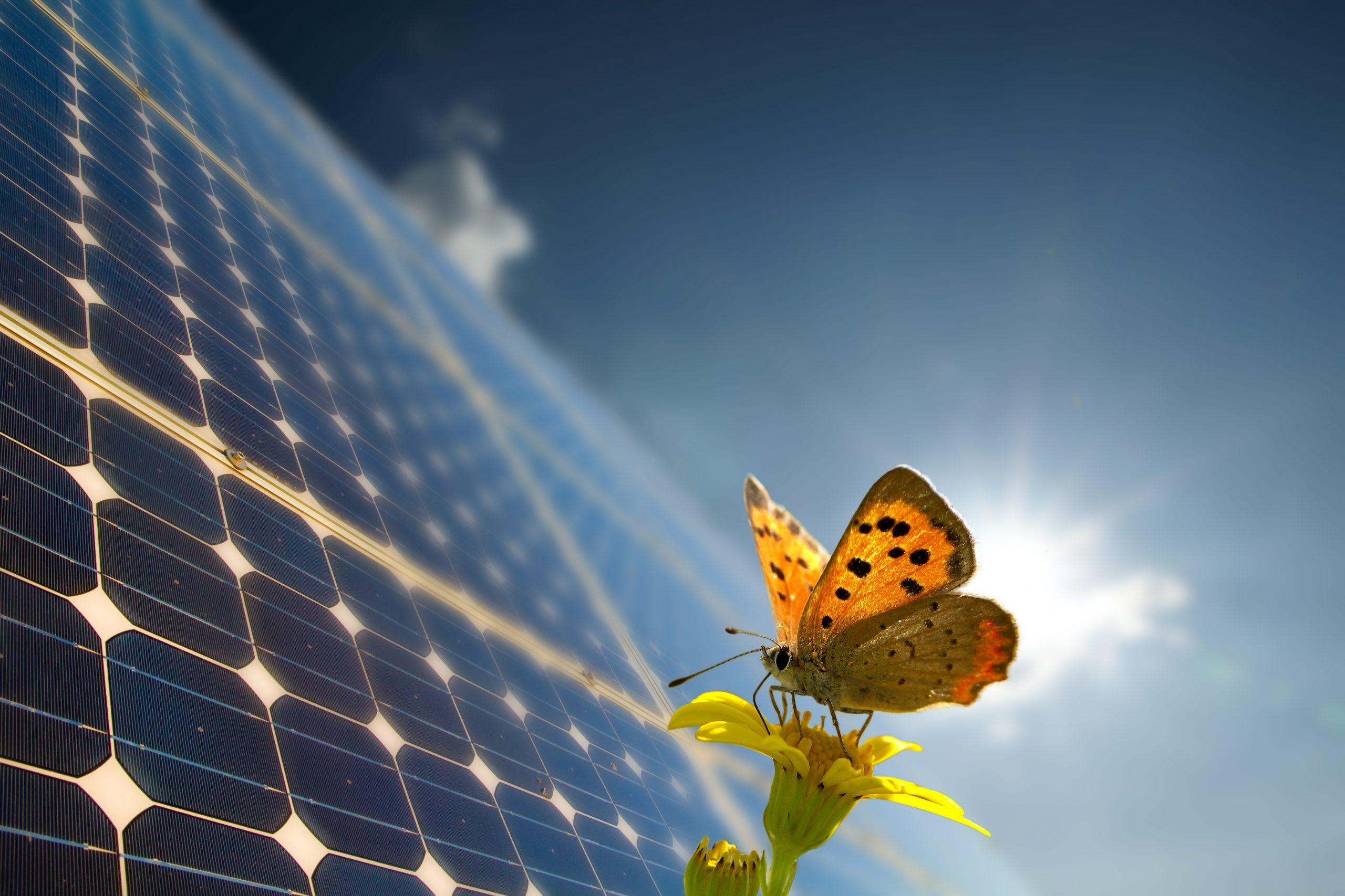 Así es la nueva Ley de Cambio Climático y Transición Energética