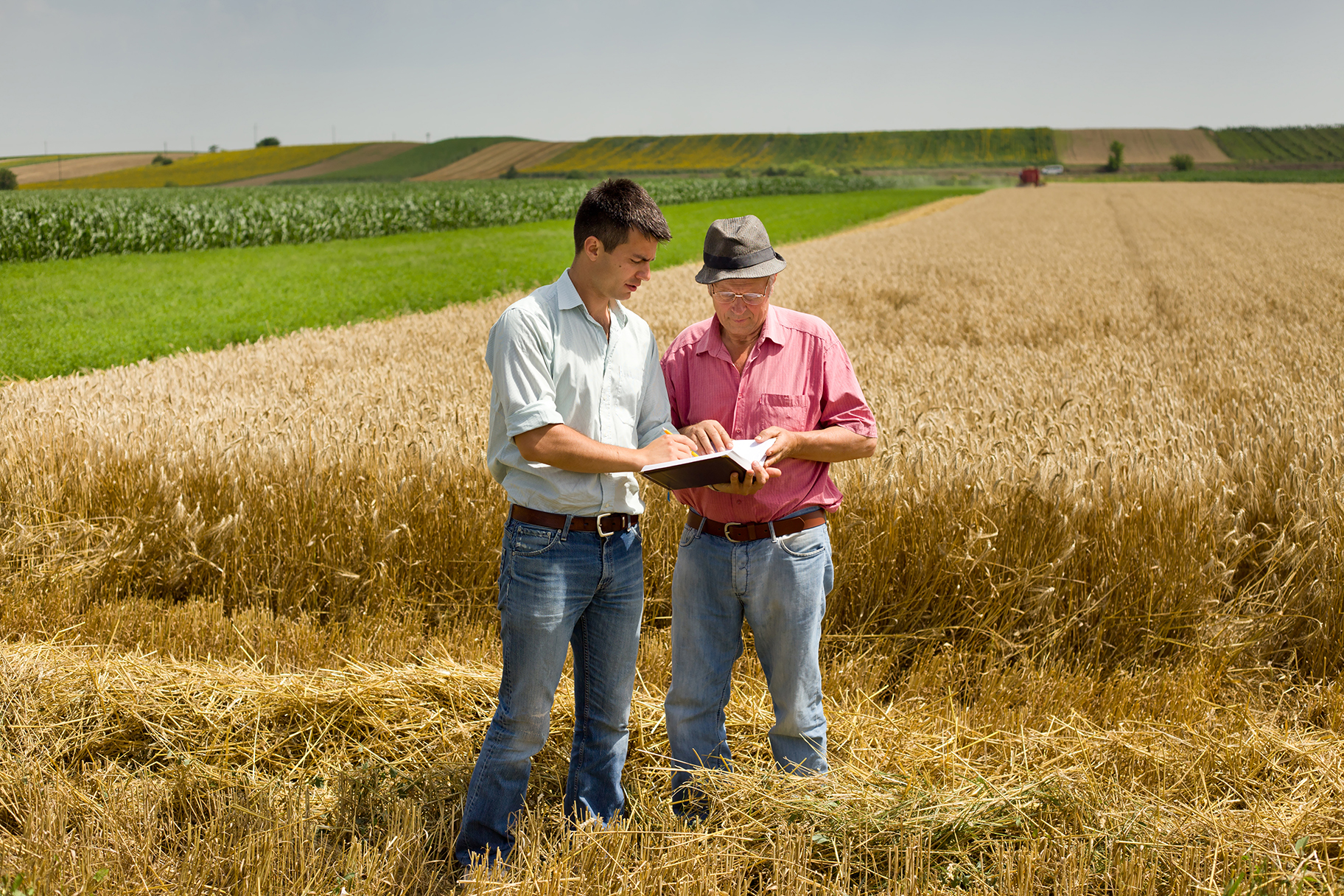 Agribusiness in Uruguay a good business