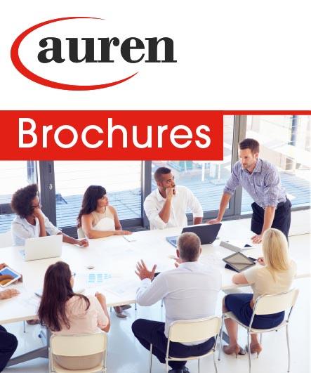 Auren Market Research 2019